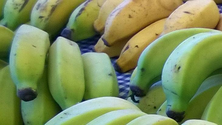 Bananas na banca da feira.