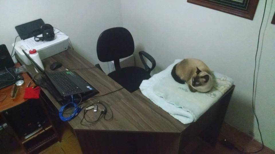 Mesa de trabalho do Myron David.