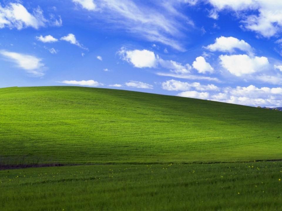 Wallpaper padrão do Windows XP.