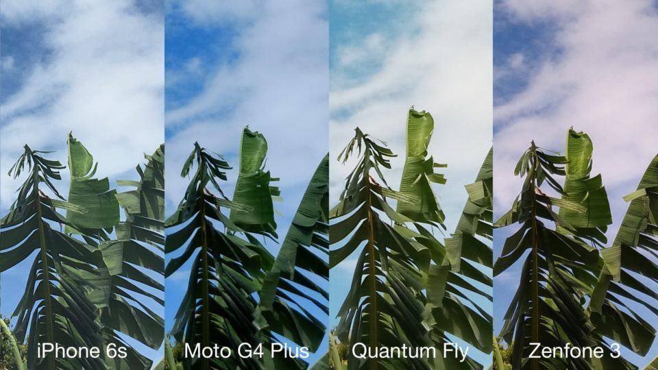 Bananeiras e céu pelas lentes de quatro smartphones.