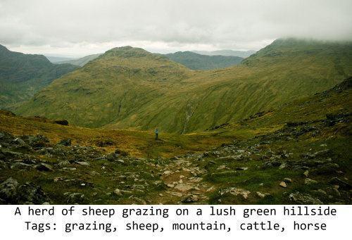 Foto de uma paisagem com a leitura algorítmica na legenda, em inglês.