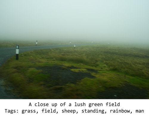 Foto de uma paisagem úmida com legenda gerada por algoritmo no rodapé.