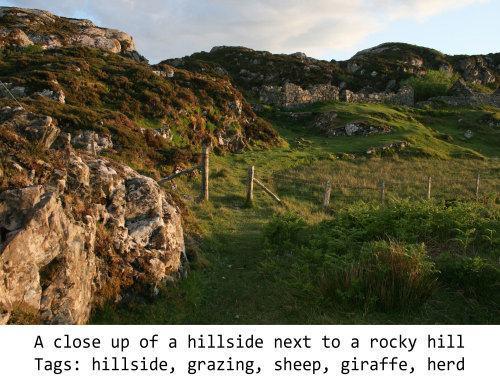 Foto de uma colina com legenda gerada por algoritmo no rodapé.