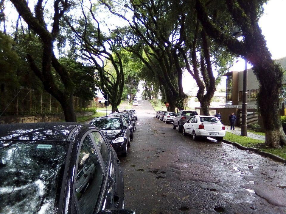 Foto ao ar livre, com muito detalhe, de uma rua com carros e árvores em dia de chuva.