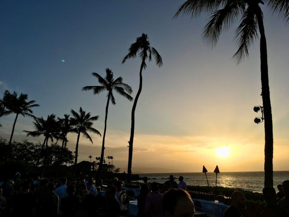 Foto de uma praia no entardecer, com palmeiras enormes em primeiro plano.