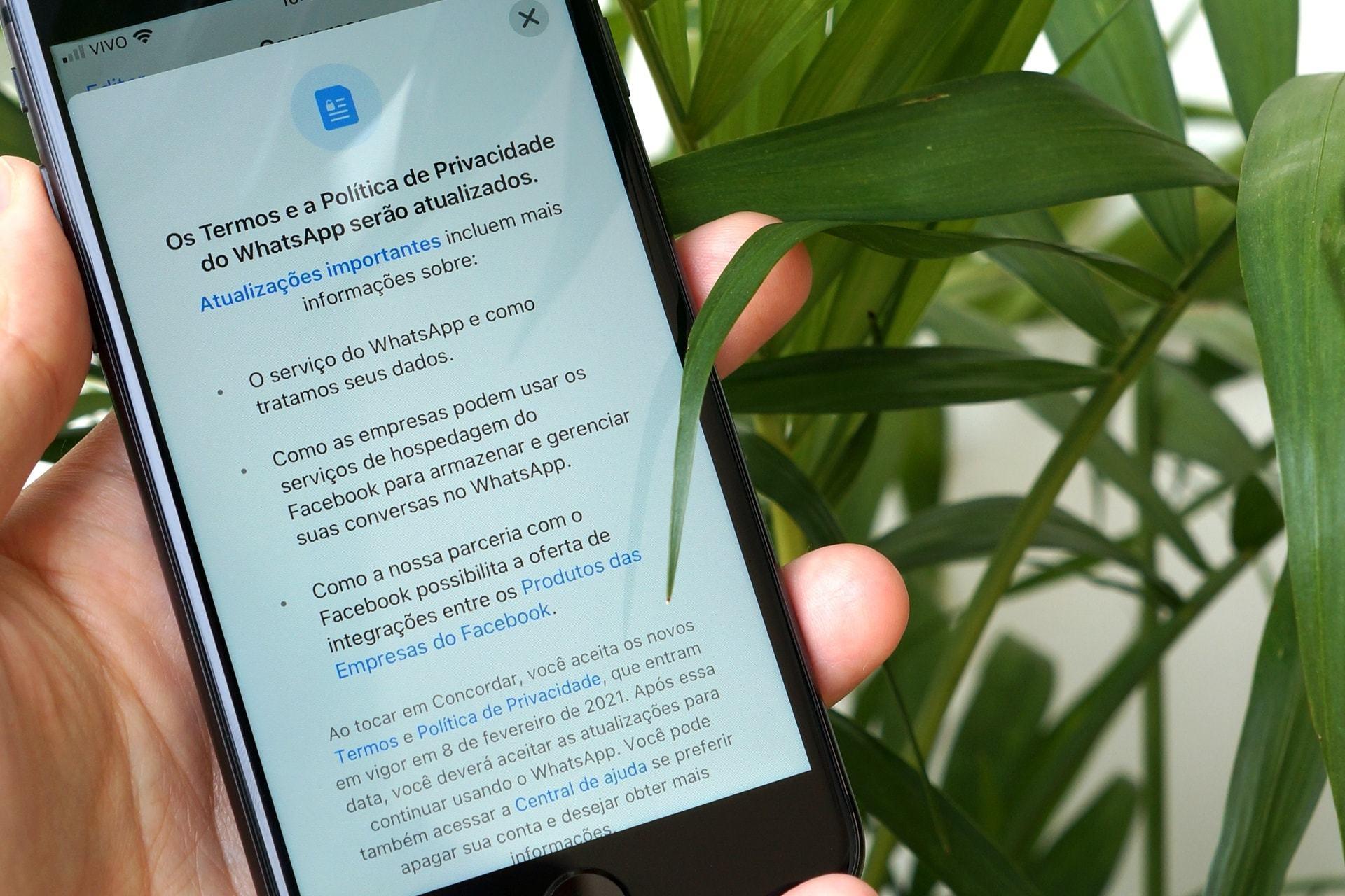 Uma mão segurando um iPhone, com a tela de aceite da nova política de privacidade do WhatsApp aberta. Ao fundo, folhas de uma planta.